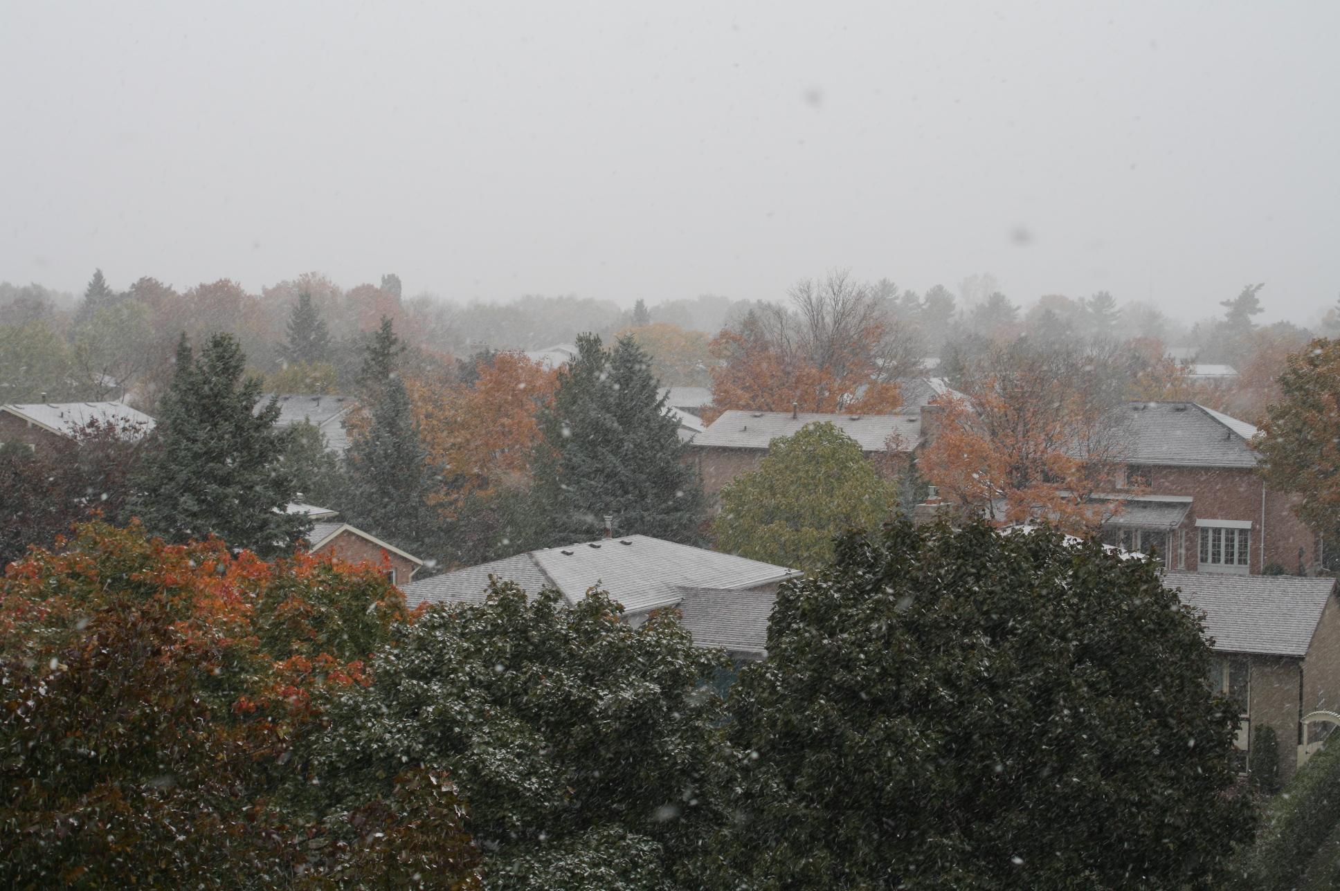 snowingincadana